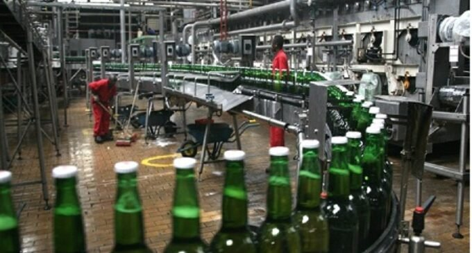 Nigerian Breweries declares N7.7bn dividend, offers new shares option for shareholders