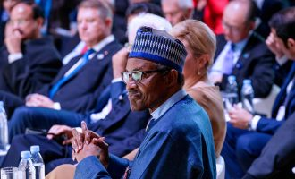 Buhari, the imaginative clone and human genetics