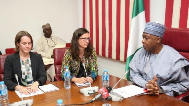British envoy urges senate to pass PIGB, electoral reform act before 2019 polls