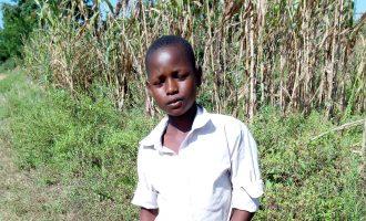 Encounter with schoolboy farmer