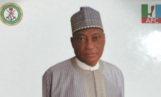 PDP accuses defence minister of diverting military funds to APC campaign