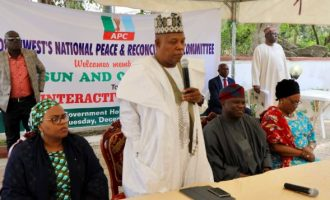 APC reconciliation: Shettima hails Ambode, describes him as 'my politician of the year'