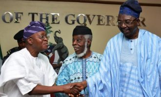 Afenifere faction endorses Buhari for 2019, says 'he's trying his best'