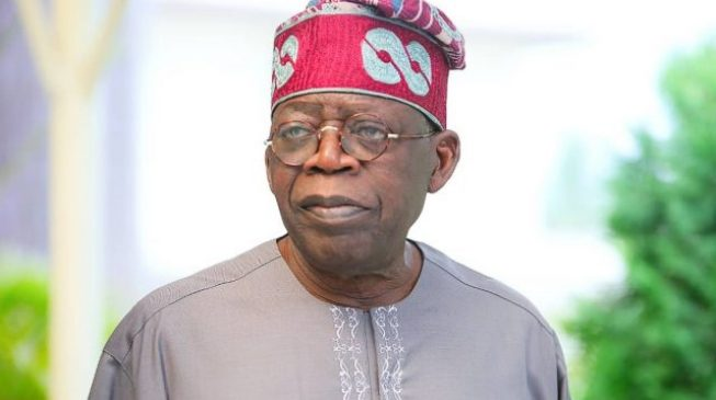 Ex-CBN dep gov: Some people want to use and crush Tinubu