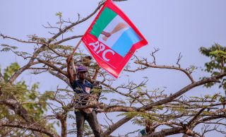 PROMOTED: Group accuses four Bauchi APC national assembly candidates of certificate forgery, age falsification