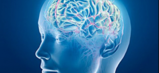 Scientists develop mind-reading machine that turns thoughts into sentences