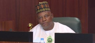Governor Shettima's crocodile tears
