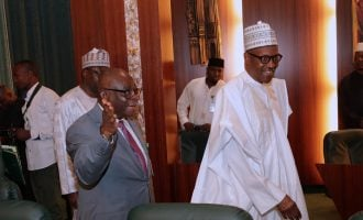 Onnoghen: The wasp on the nation's scrotum