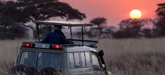 Travel Guide: Six vital things to note when packing for a safari holiday