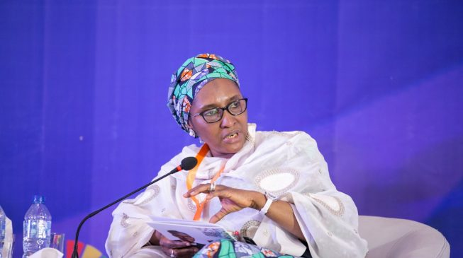 We will implement subsidy removal gradually, says Zainab Ahmed