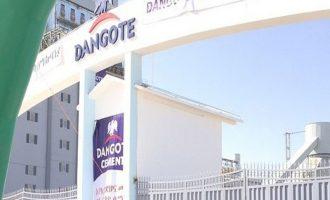 Dangote Cement: Revenue growth amidst FX challenges