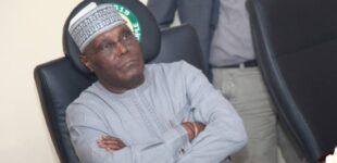 FACT CHECK: Did US indict Atiku as brain behind killings in Nigeria?