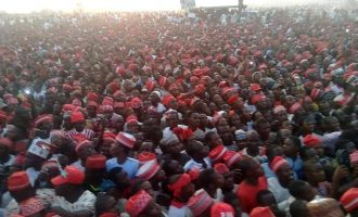 VIDEO: Atiku pulls massive crowd in Kano