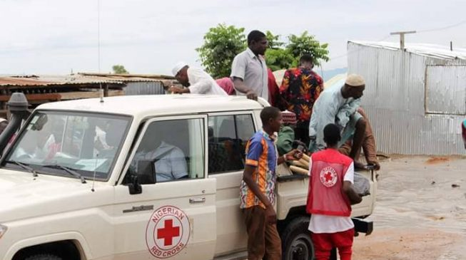 Red Cross releases toll-free lines, promises to assist vulnerable during elections