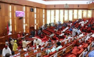 Senate approves conference committee report on bill establishing NFF