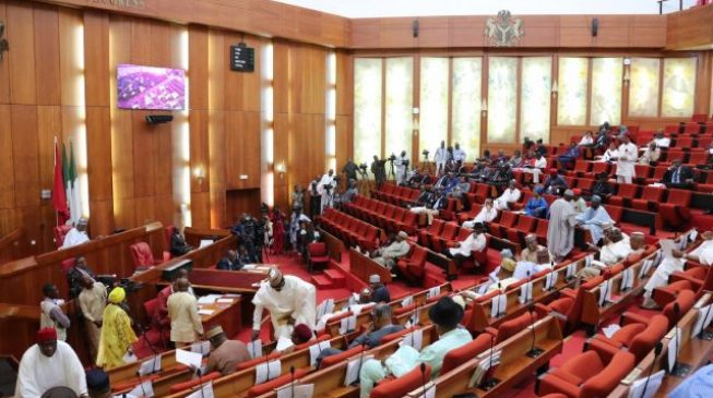 Senate committee finally lays budget report