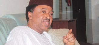 Shehu Sani asks lecturers to withdraw from election duty