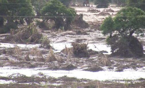Cyclone Idai kills 89 in Zimbabwe
