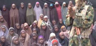 Chibok girls: Over 20 parents have died from waiting, says BBOG