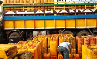 CBN directs banks to provide funding for producers of cashew, palm oil