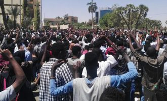 Lessons from Sudan and Algeria