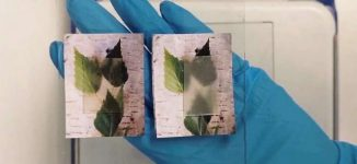 Scientists invent transparent wood that stores, releases heat