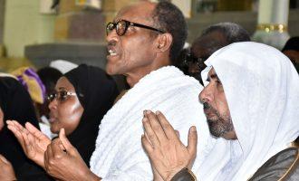 Nigerian politicians: Leaders or locusts?