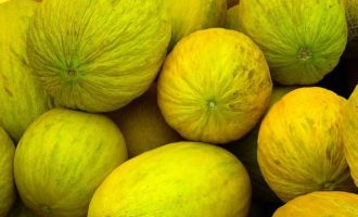 Eat Me: Boosts immune system, digestion…5 health benefits of golden melons