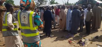 Death toll rises to 30 in Borno suicide attack