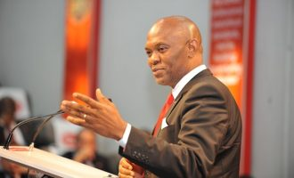 Bayero University to honour Tony Elumelu