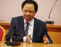 Shehu Sani: Millions spent by govs on security doesn't reach police officers