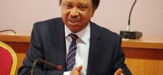 'Progressives shouldn't be afraid of revolution' — Shehu Sani taunts APC