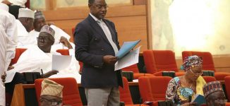 Supreme court sacks Niger senator