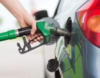 Egypt slashes fuel subsidy to ease economic pressure