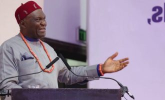 Be ready to defend yourselves, Ohanaeze tells Igbo over Ruga ultimatum
