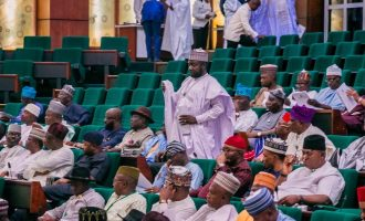 Reps: Neighbouring countries fuelling insecurity in Nigeria