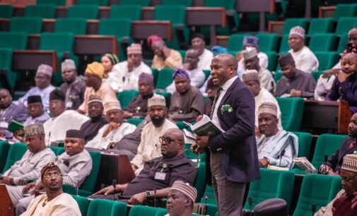 Reps probe US ban on immigrants from Nigeria