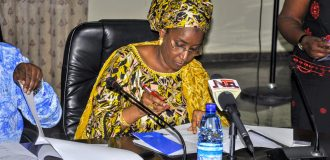 Over 12m Nigerians benefitting from SIPs, says minister