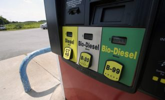 'Biodiesel could solve Nigeria's energy problem'