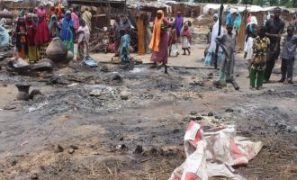 Boko Haram sets 73 houses ablaze in Borno