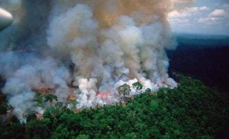 Outrage as fire rips through Brazil's Amazon — world's largest rainforest