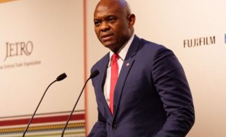 Elumelu to Japanese government: Empowering entrepreneurs is the best way to develop Africa