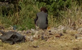 Nigeria to mark 59th independence as  world capital of open defecation