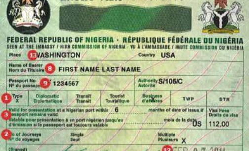 Tanzania will emulate Nigeria's visa policy, says envoy