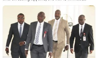 Who do 'Magu boys' work for, EFCC or an emperor?