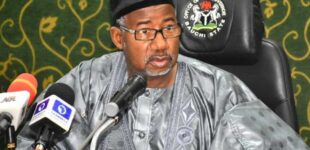 'Please don't carry AK-47' — Bauchi gov cautions herders after backlash
