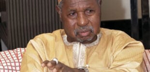 Masari to Gumi: Stop demanding amnesty for bandits — even animals can't be killed unjustly