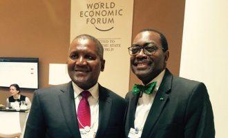 UN appoints Dangote, Adesina to battle global malnutrition