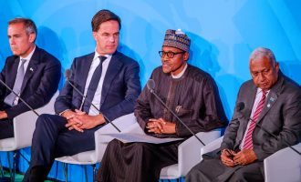 Climate Change: We'll mobilise Nigerian youths to plant 25 million trees, says Buhari