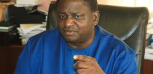 Femi Adesina: Looting of warehouses caused by #EndSARS protests NOT poverty